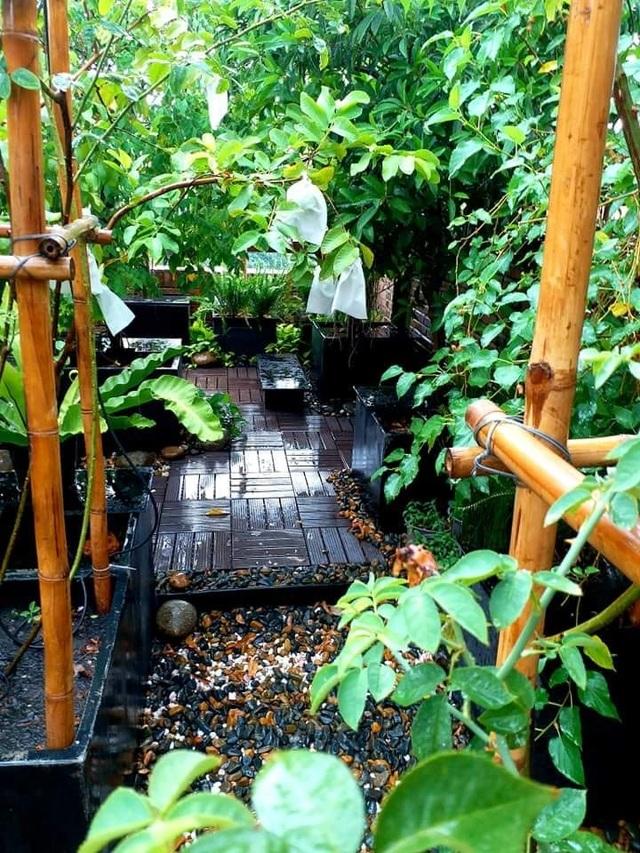 Vườn cây, ao cá đẹp mê trên sân thượng tầng 4 của ông chủ quán phở Sài Gòn - 4