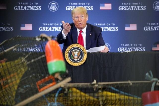Ông Trump dọa đánh thuế hàng hóa EU, Trung Quốc vì tôm hùm - 1
