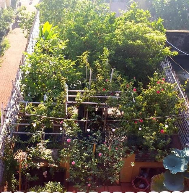 Vườn cây, ao cá đẹp mê trên sân thượng tầng 4 của ông chủ quán phở Sài Gòn - 1