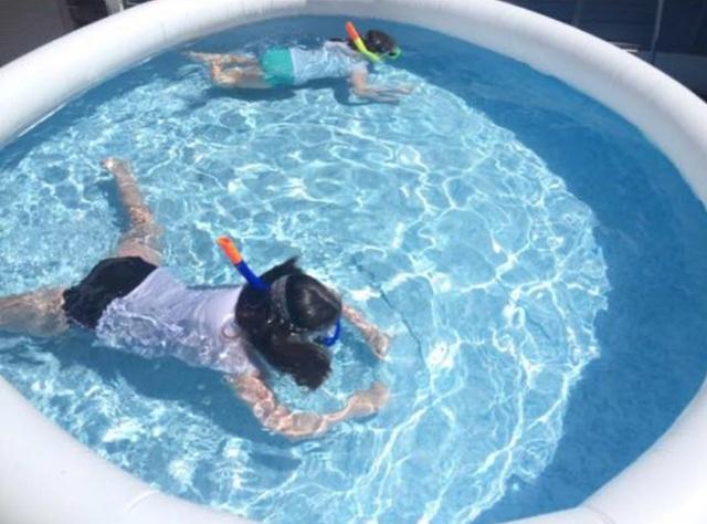 Bi hài đặt mua vợt rác bể bơi trên mạng, nhận về... vợt cho bể cá - 1