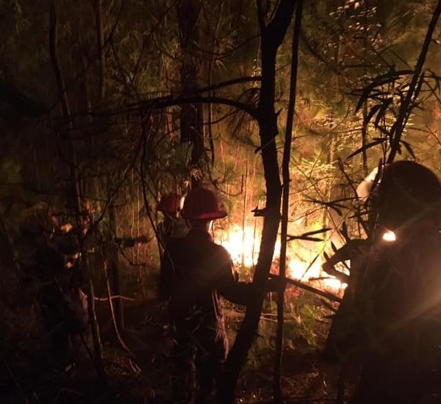 Suốt đêm dập đám cháy rừng - 1