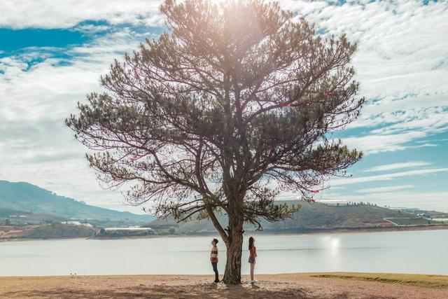 Nhiếp ảnh gia xấu trai cưa đổ vợ đẹp với lời hứa tặng 10.000 ảnh để đời - 4