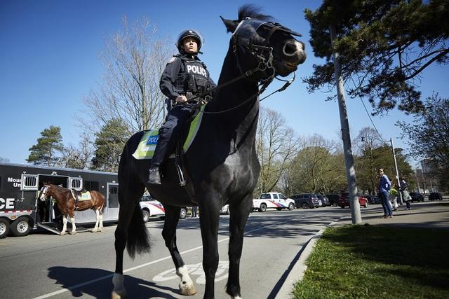 Các đội cảnh sát kỵ binh trên thế giới - 6