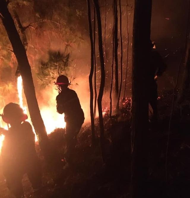 Suốt đêm dập đám cháy rừng - 2