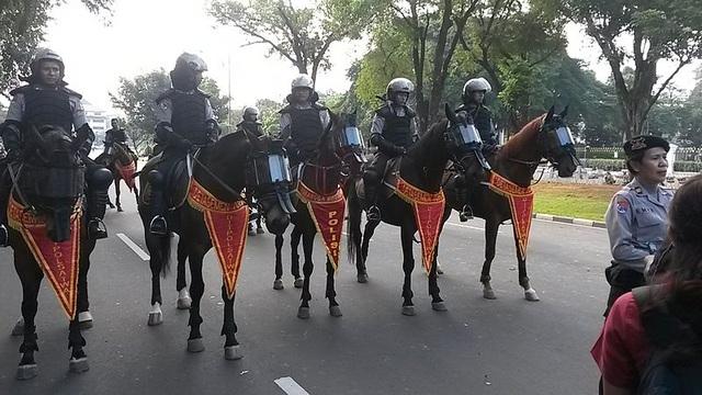 Các đội cảnh sát kỵ binh trên thế giới - 2