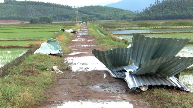 Lốc xoáy làm 80 ngôi nhà tốc mái, hàng chục ngàn hộ dân mất điện - 4