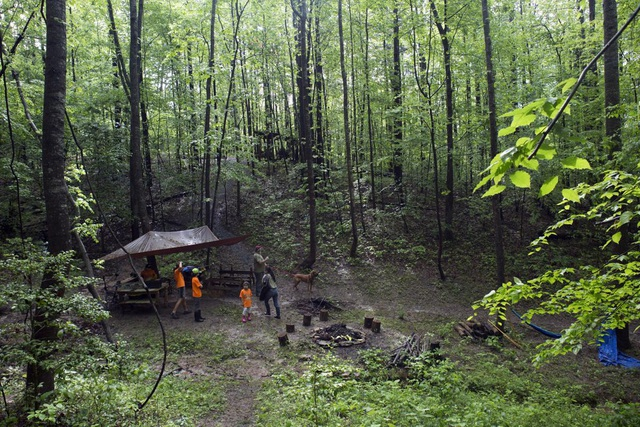 Mỹ: Trường học trong rừng hoạt động suốt đại dịch Covid-19 - 2