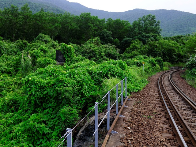 Cầu đường sắt Đồn Cả: Cheo leo tàu vượt núi! - 2