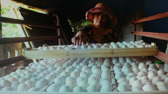Phụ nữ được hỗ trợ khởi nghiệp: Doanh thu 400-500 triệu đồng/tháng - 4