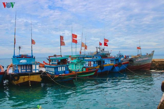 Khám phá đảo Lý Sơn - thiên đường biển xanh của Quảng Ngãi - 21
