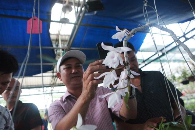 Đại gia Hà Nội chi 5 tỷ đồng mua giỏ lan nhìn như ngọn rau muống - 14
