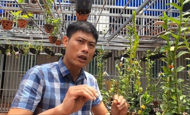 Gặp người  mua 3 cây lan đột biến gene giá 32 tỷ đồng ở Bình Phước - 2