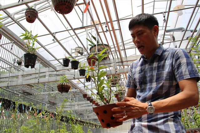 Gặp người  mua 3 cây lan đột biến gene giá 32 tỷ đồng ở Bình Phước - 1