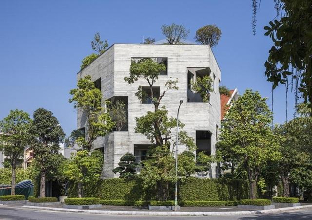 Những ngôi nhà phủ cây xanh, mỗi buổi sáng chim hót líu lo như trong rừng - 10