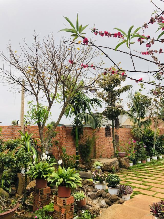 Nhà vườn 390 triệu đồng của con trai xây tặng mẹ dưỡng già ở Đắk Nông - 4