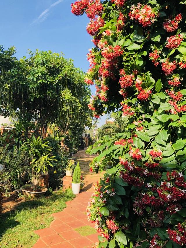 Nhà vườn 390 triệu đồng của con trai xây tặng mẹ dưỡng già ở Đắk Nông - 5
