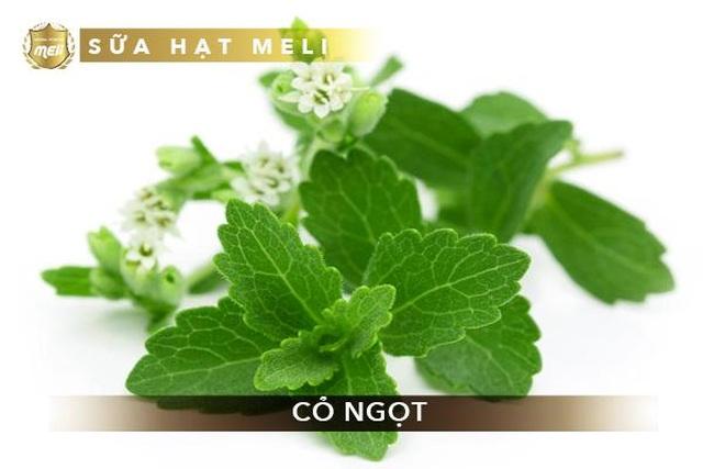 Sữa hạt Herbal Meli - Sự kết hợp hoàn hảo giữa hạt, ngũ cốc và thảo dược - 3