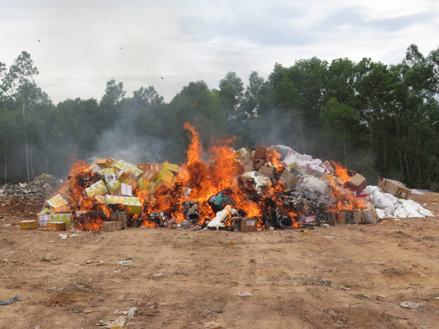 Quảng Ngãi: Tiêu hủy 18.000 sản phẩm hàng giả, kém chất lượng - 2