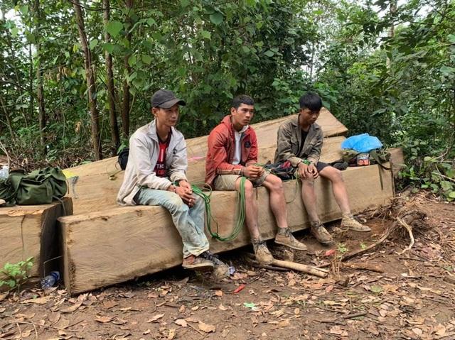 Vận chuyển gỗ từ rừng nguyên sinh, nhóm lâm tặc bị bắt tại trận - 2