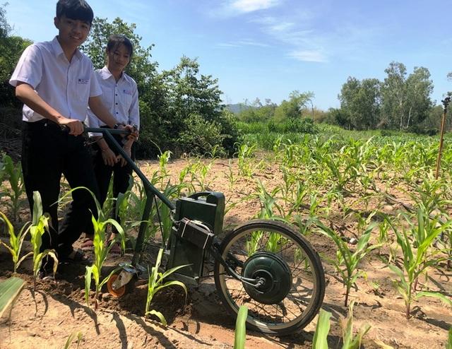 Hai học sinh lớp 9 chế tạo máy cày làm cỏ, bón phân - 1