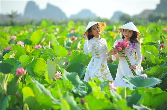 Thơ mộng sen hồng vùng đất cố đô Ninh Bình - 5