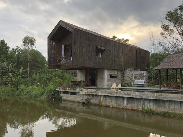 Chán biệt thự phố, vợ chồng Việt về quê làm nhà tranh giữa vườn cây, ao cá - 2