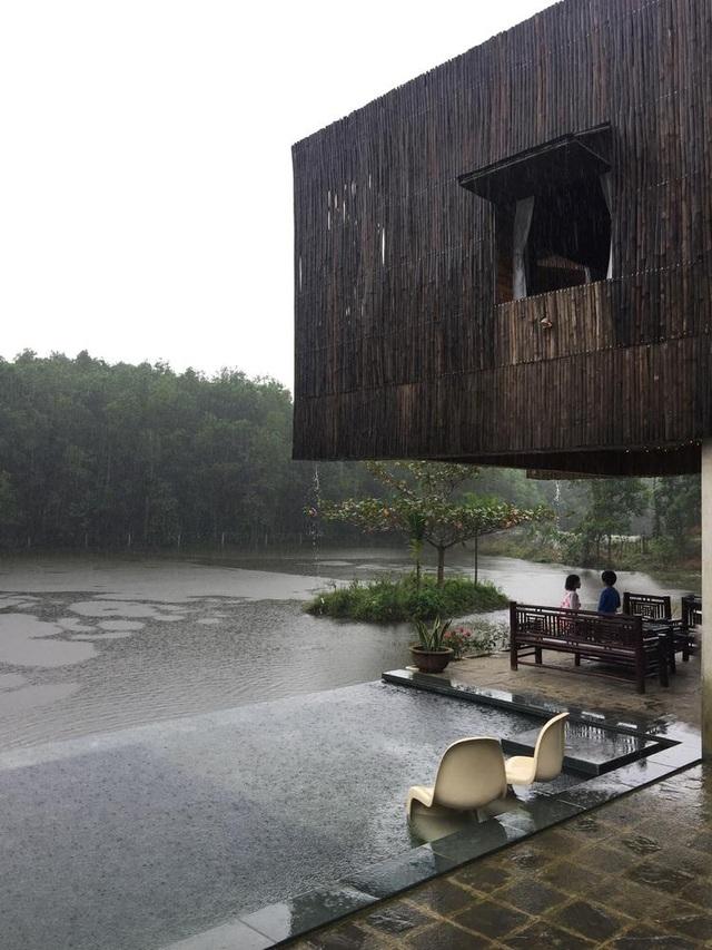 Chán biệt thự phố, vợ chồng Việt về quê làm nhà tranh giữa vườn cây, ao cá - 8