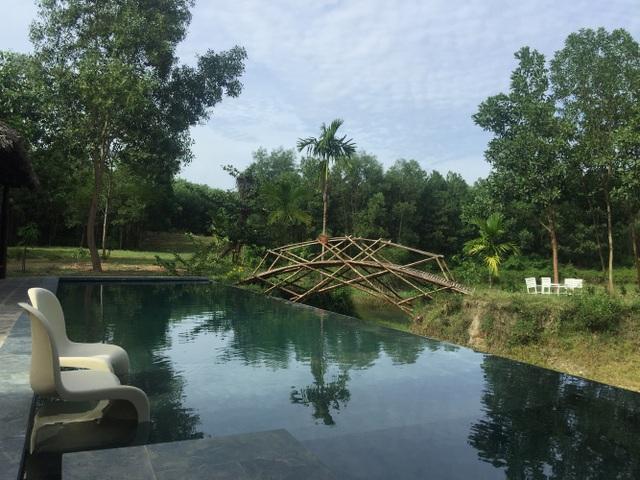 Chán biệt thự phố, vợ chồng Việt về quê làm nhà tranh giữa vườn cây, ao cá - 9