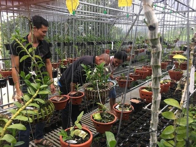 Bán cả tạ cà phê mua 1 cây lan rừng, sau 2 năm sở hữu cơ ngơi tiền tỷ - 2