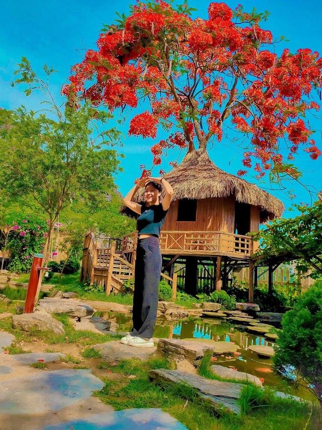 """Phượng mọc giữa nhà gỗ, hồ sen nở rộ gây sốt ở """"thánh địa sống ảo"""" - 3"""