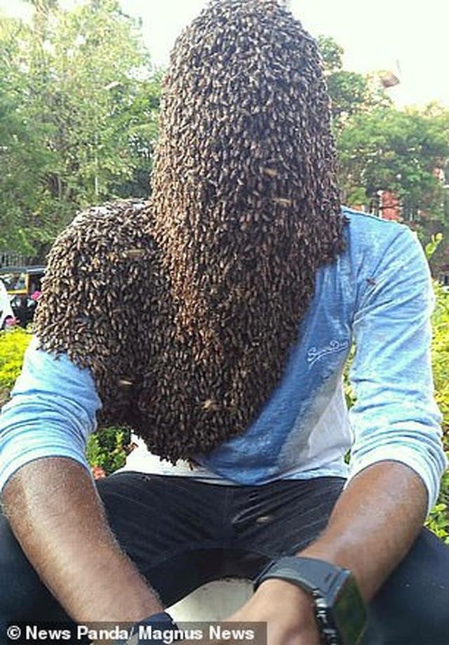 Chàng trai để 60.000 con ong bám kín mặt hơn 4 giờ, lập kỷ lục thế giới - 1