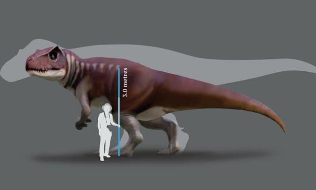 Phát hiện dấu chân của loài khủng long mới chưa từng được biết đến - 1