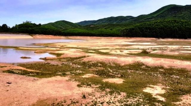 Người dân phải bỏ hoang hàng nghìn ha đất vì nắng hạn - 4