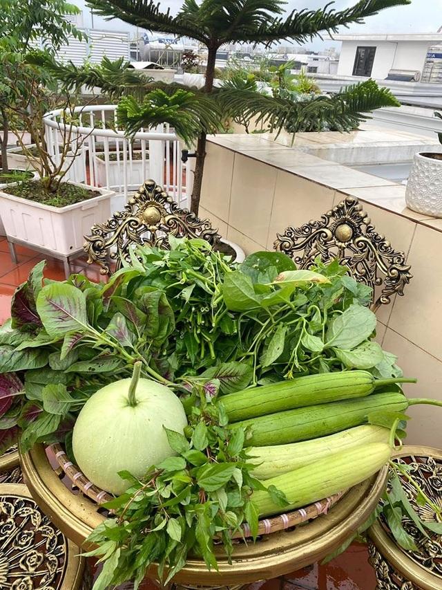 Mẹ đảm Hải Phòng trồng rau, nuôi cá trên sân thượng biệt thự triệu USD - 6