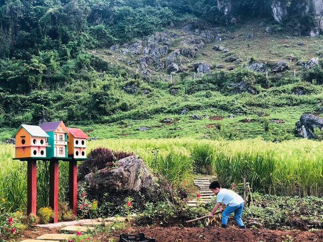 Bỏ 2 tỷ đồng mua đất ngoại ô: Vợ chồng trẻ làm nhà vườn, tay lái xế hộp - 4