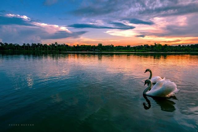 Đông Hà Nội có khu đô thị sở hữu thiết kế cảnh quan đẹp nhất thế giới - 8