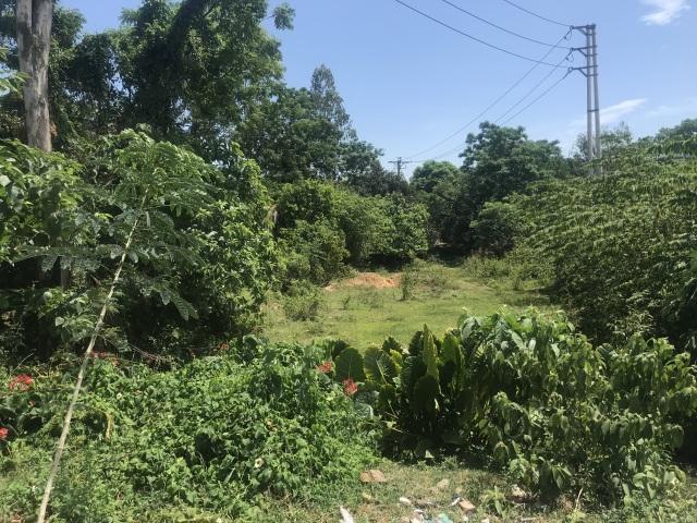 Diễn biến bất ngờ vụ thu hồi đất vô lý, dân kiện chính quyền ra tòa  - 2