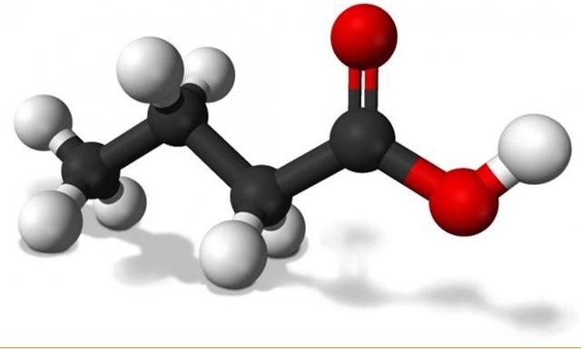 Tại sao Lipidcleanz là giải pháp hỗ trợ kiểm soát chỉ số triglycerid tăng cao? - 1