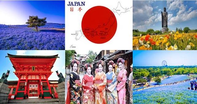 Phương pháp giáo dục tiên tiến Nhật Bản tại Hoàng Long - Hanoi Tokyo - 5