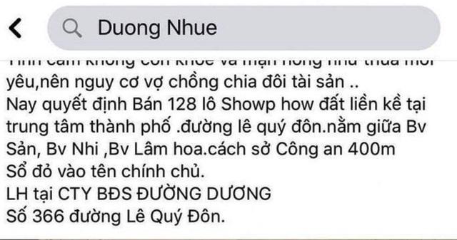 """Hủy kết quả đấu giá 128 lô đất vợ chồng Đường """"Nhuệ"""" từng rao bán - 2"""