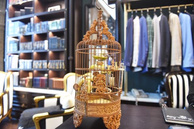 Mãn nhãn với bộ sưu tập chim quý hiếm, giá khủng của vua chim màu Việt - 11