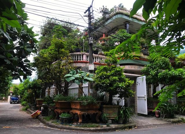 """Độc đáo nhà 3 tầng phủ kín cây xanh của """"dị nhân"""" chơi cây nổi tiếng - 4"""