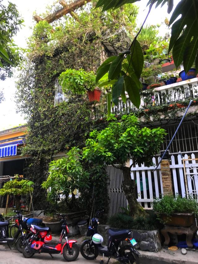 """Độc đáo nhà 3 tầng phủ kín cây xanh của """"dị nhân"""" chơi cây nổi tiếng - 5"""