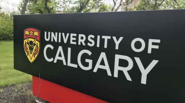 Canada: 14 sinh viên bị cáo buộc gian lận trong kỳ thi online - 1