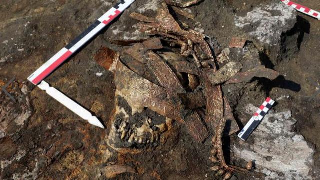 Sự thật về huyền thoại của những chiến binh Scythian cổ đại - 1