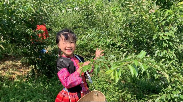 """""""Hướng dẫn viên"""" 6 tuổi rưỡi nói tiếng Anh như gió quảng bá du lịch Việt - 2"""