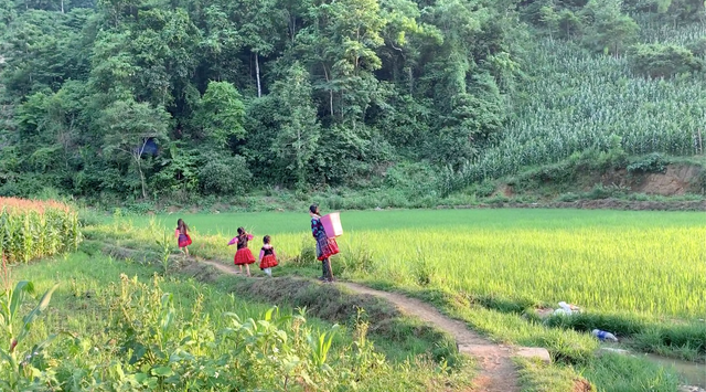 """""""Hướng dẫn viên"""" 6 tuổi rưỡi nói tiếng Anh như gió quảng bá du lịch Việt - 5"""