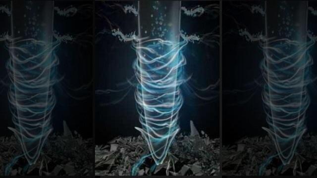 Cảnh báo nguy cơ nhựa nano có thể tích lũy trong rễ cây - 1