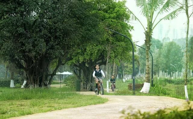 Vì sao chất lượng không khí ở Ecopark lại sánh ngang châu Âu? - 1