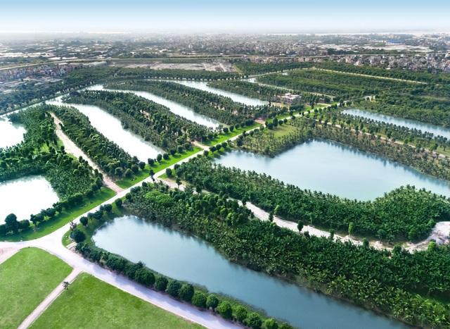 Vì sao chất lượng không khí ở Ecopark lại sánh ngang châu Âu? - 4